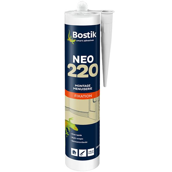 neo220picture 600x600 72 REZ